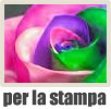 grafica per la stampa